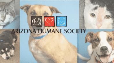 Arizona Humane Society help in adopting pet