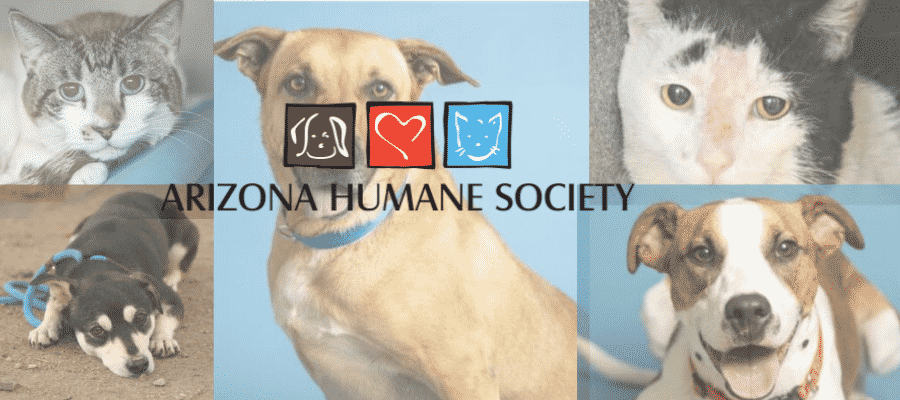 Arizona Humane Society help in adopting pet